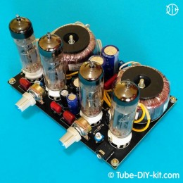 Electronic DIY kit: Tube SRPP stereo low frequency amplifier for computer