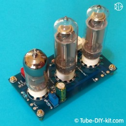 Electronic DIY kit: Single Channel Hi-End Low Frequency Amplifier Unit